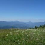 Pogled z Uršlje gore