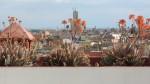 Pogled s terase muzeja fotografije